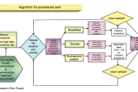 Evidenced-based Clinical Practice Guideline for the Management of Newborn Pain