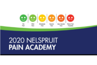 [Cancelled] 2020 Kimberley Pain Academy – 27 June 2020